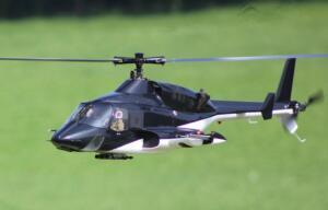 46Freundschaftsfliegen WilModellfluggruppe Rosental